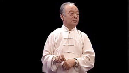 马虹—陈式太极拳劲道释秘-拆拳讲劲_08