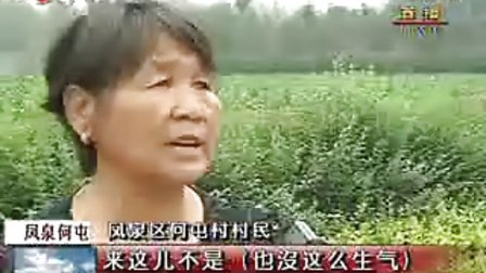 新乡市凤泉区何屯村玉米地被毁