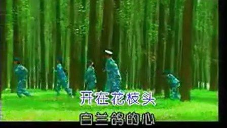 陈红 潇洒女兵