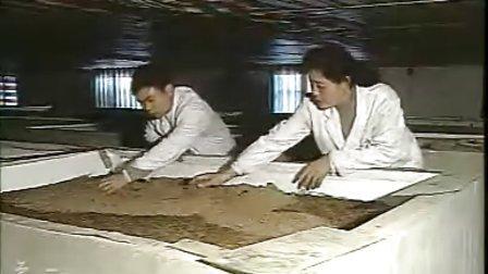 土元土鳖虫养殖.