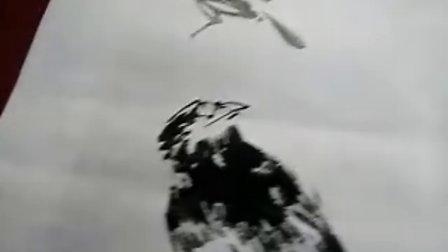 宋鲁民教你画鸟
