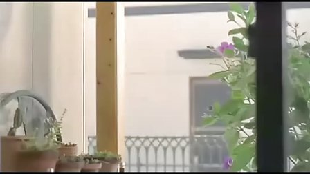 五个扑水的少年 又名水男孩【妻夫木聪成名作】