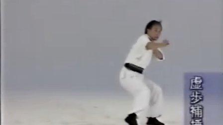 北派拳法技击精要 徐纪