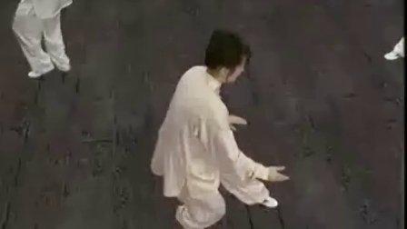 吴阿敏24式太极拳19-20 标清