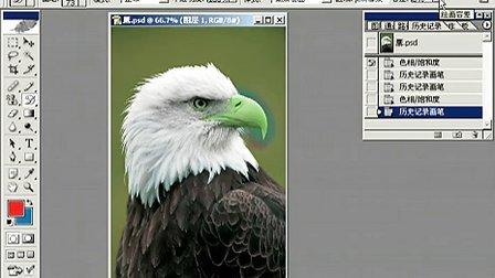 Fhotoshop从头学起视频Photoshop从头学起第20集