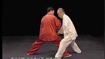 马虹—陈式太极拳劲道释秘-拆拳讲劲_06