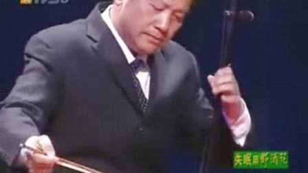广东音乐 卜灿荣[双星恨]