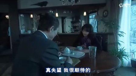 相棒第七季15  繁体中文字幕