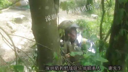 深圳猎豹野战图片视频!