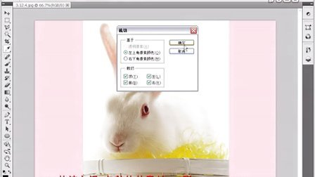 "photoshopCS5用""裁切""命令裁切图像.avi"
