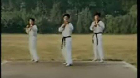 跆拳道腿法组合练习