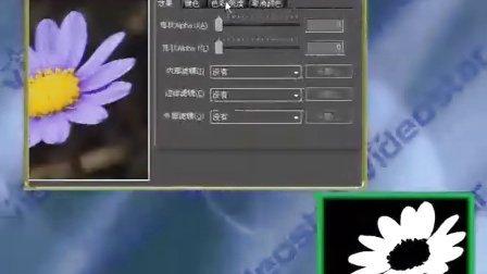 EDIUS 视频教程突出主体颜色免费观看