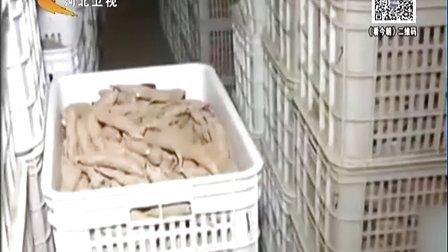 红薯发芽能吃吗?[看今朝]