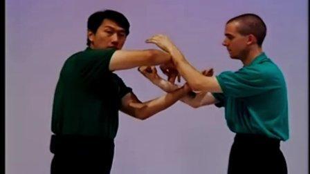 叶问咏春拳体系寻桥CD2