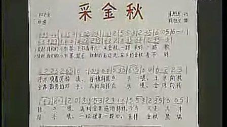 七年级音乐优质课展示上册《采金秋》西南师大版黄小乐