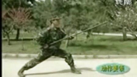 武警应急棍术十个动作