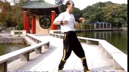 彭南系咏春拳系统教程 --标指