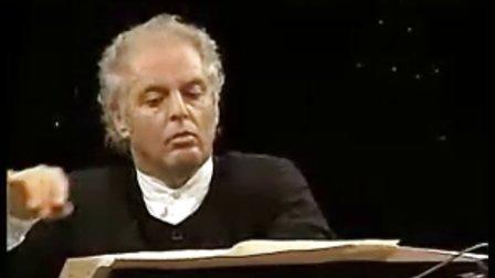 1998柏林森林音乐会《Adios Nonino》(再见诺尼诺)