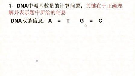 汉水丑生  高中生物 必修二 DNA的结构和复制