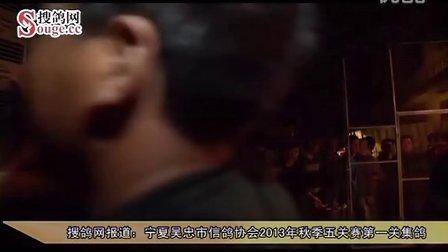 宁夏吴忠市信鸽协会2013年秋季五关赛第一关集鸽