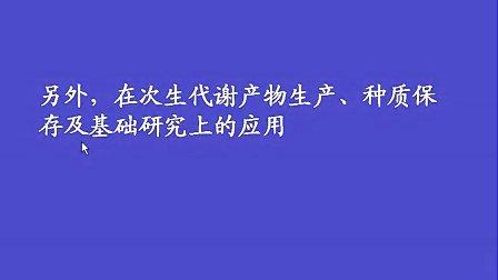 植物组织培养全套视频教程共24学时 陈利萍 浙江大学.wmv