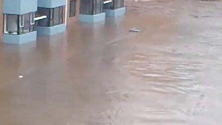 口前洪水实拍012