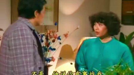 刘德华【猎鹰】国语DVD版05