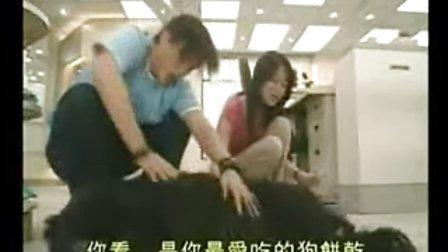 情事緝私檔案 國語8郭晉安 郭藹明 唐文龍