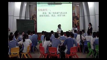 八年级科学优质课展示《二氧化碳》浙教版陈老师