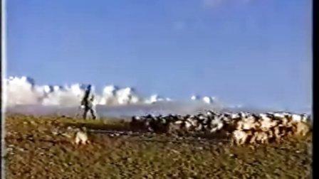 经典纪录片——藏北人家