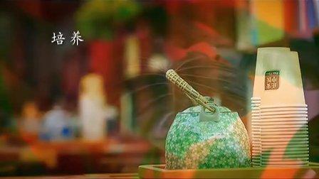 正安中医宣传片