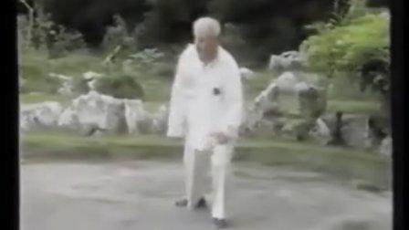 杨氏太极拳85式(2) 傅钟文示范