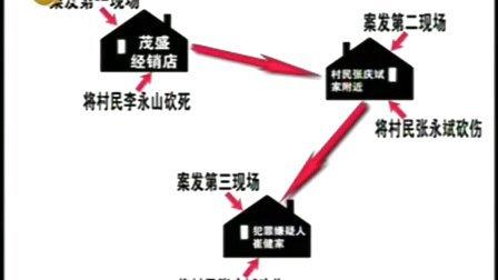 辽宁都市台 正在行动 100408自杀的真相