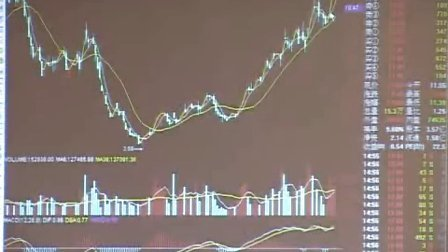 """刘英主讲:知钱""""学士本科二年级""""股票培训课程第六节(公司分析)第二集"""