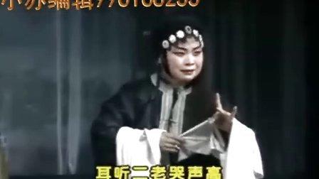 豫剧红脸经典戏曲《白虎星归位》之【探监】一折