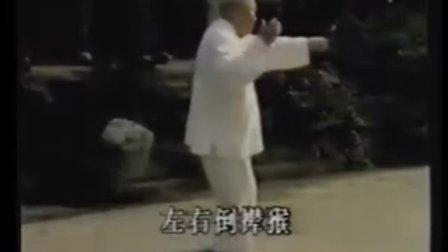 杨氏太极拳85式(1) 傅钟文示范