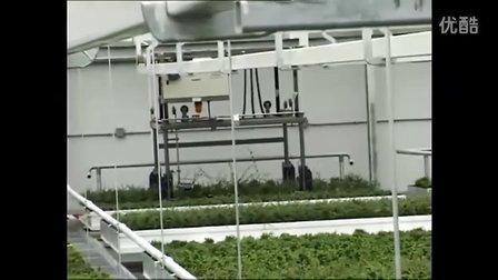 科迪马 为盆景种植者Oriental定制的物流系统