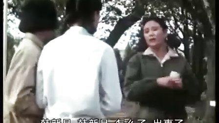 电影《穆斯林的葬礼》-谢铁骊、王诗槐、盖丽丽、薛淑杰、史兰芽