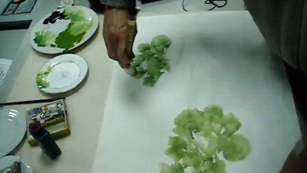 王应敬教授洛阳牡丹:绿牡丹小品 1