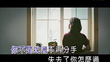张家源-短消息vcd