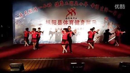 枞阳县广场双人舞 平四 《喜乐年华》