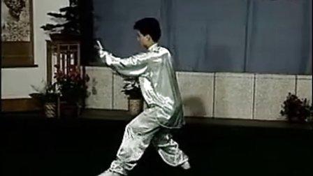 陳思坦 40式楊式太極拳