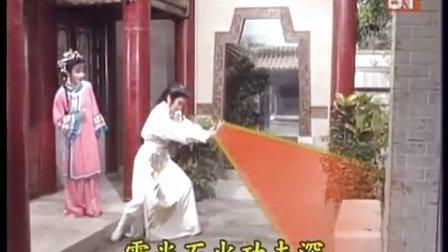 金雕玉芙蓉-纯阳掌力如雷震(潇湘夜雨)
