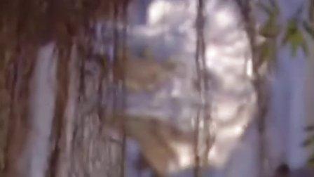 我和僵尸有个约会第三部永恒国度粤语 05