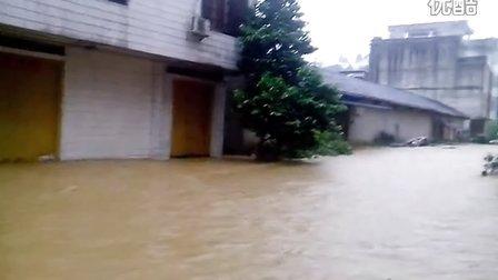 广西平南大鹏镇百年一遇的大洪水