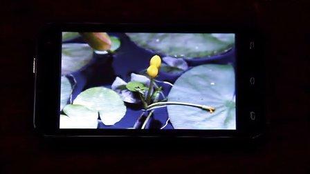 Hotwind DG200 HD 视频播放测试