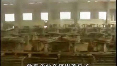 10-07-02 创先争优活动——村官张胜利 (河北省涞源县白石口村党支部张胜利)