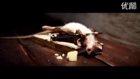 这小老鼠太厉害了!50秒后笑不笑由你!
