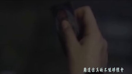 【聃】电影《疯狂的导演》插曲MV