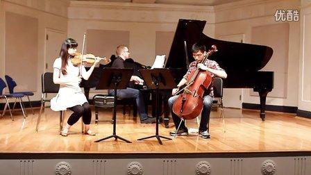 舒曼A小调钢琴三重奏 -  第一乐章